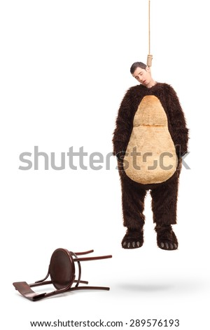 Full length portrait of a dead man in a bear costume hanging on a rope with fallen chair beside him isolated on white background  - stock photo