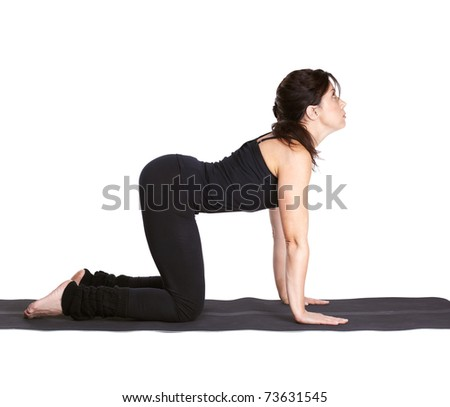 full-length portrait of beautiful woman working out yoga excercise dog pose mardzhariasana on fitness mat - stock photo