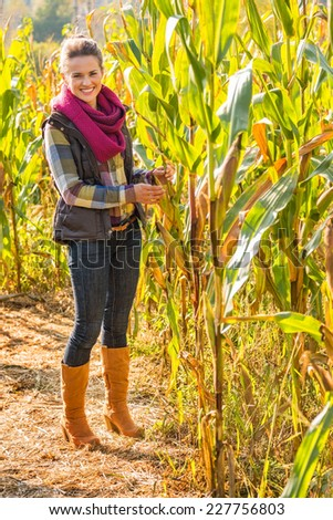 Full length portrait of happy young woman in cornfield - stock photo