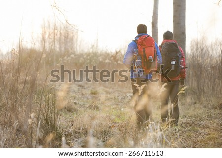 Full length rear view male hikers walking in field - stock photo