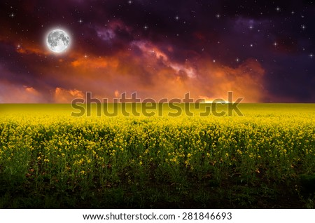 Full moon and rape board. Elements of this image furnished by NASA. - stock photo