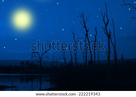 Full moon for halloween with dead tree with the dark blue sky background - stock photo