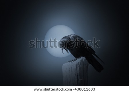 Full moon in an overcast night with crow. Added some digital grain in the background. - stock photo