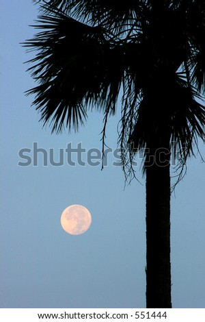 Full moon near sunrise.Madeira Beach Florida - stock photo