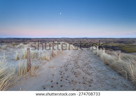 full moon over sand path in dunes, North Holland, Netherlands - stock photo