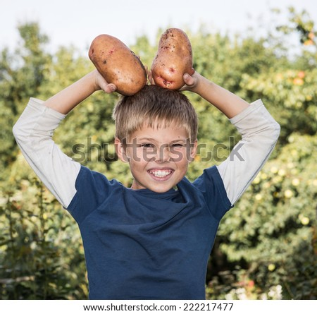 Funny boy in garden poses with huge potatoes harvested. Gardening, harvest and farming concept. - stock photo