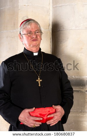 Funny cardinal holding his belly after dinner - stock photo