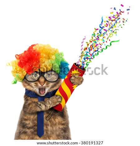 Funny cat in costume clown. Funny cat in wig with petard - stock photo