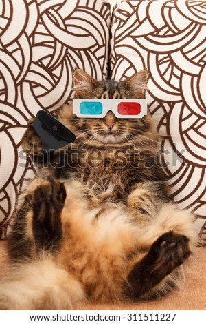 Funny cat with a remote control to TV. - stock photo