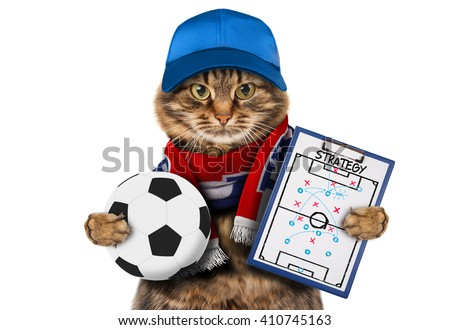 Funny cat with soccer ball on white background. Funny cat is wearing a cap and football scarf of France.  Funny cat has a strategy of match. Football theme. - stock photo