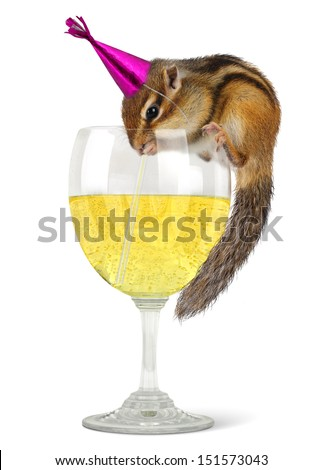 Funny chipmunk drinking champagne, celebrate concept. - stock photo