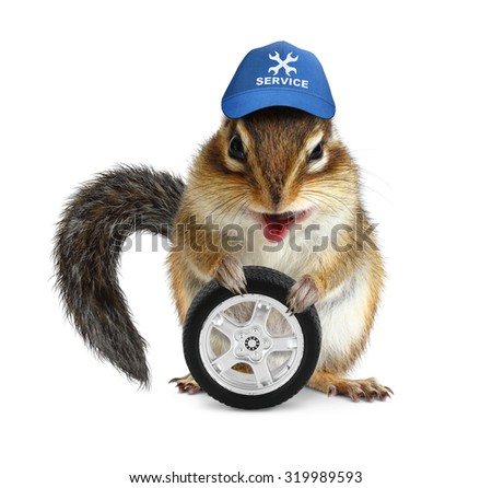 Funny craftsman chipmunk with auto wheel on white - stock photo