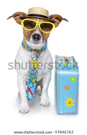 funny dog dressed up as a tourist with colorful bag , tie , sunglasses and a hat - stock photo
