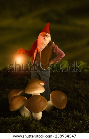 Funny garden gnome standing near mushrooms in the night holding a lantern - stock photo