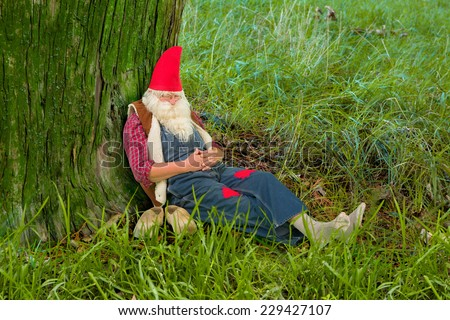 Funny gnome sleeping under a tree in the forest - stock photo