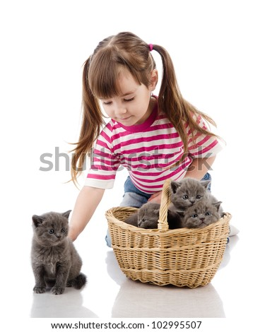 funny little girl playing with british kitten cat. isolated on white background - stock photo