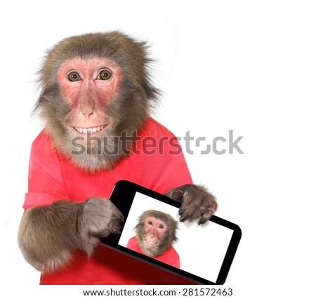 Funny monkey taking a selfie and smiling at camera - stock photo