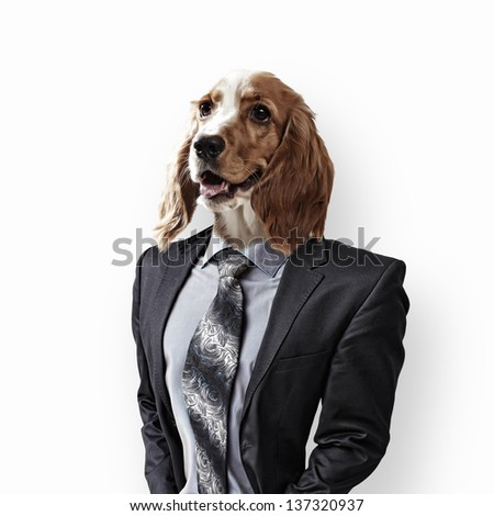 Funny portrait of a dog in a suit and orange helmet on an abstract background. Collage. - stock photo