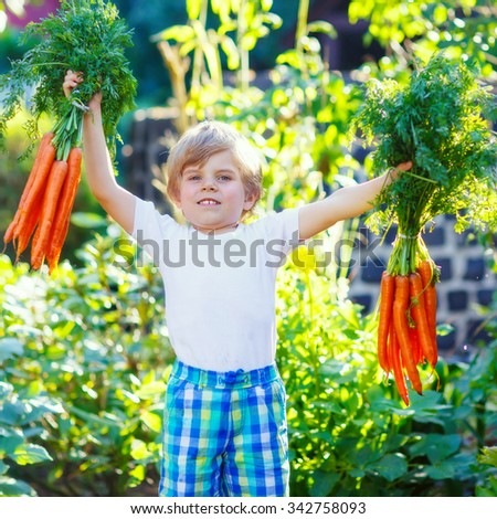 Funny smiling kid boy with carrots in domestic garden. child gardening outdoors. Healthy organic vegetables as snack for kids and kindergarten children - stock photo