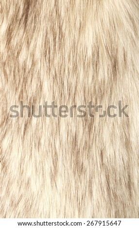 Fur background - stock photo