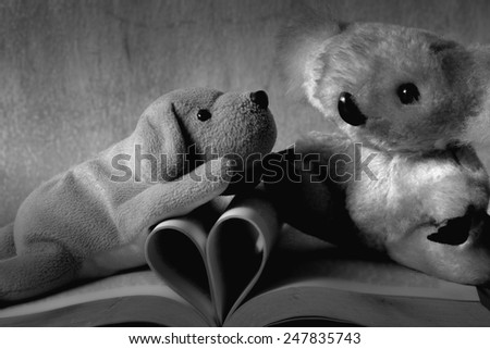 Fur bear and dog toy on books with love heart sign pages black and white version - stock photo