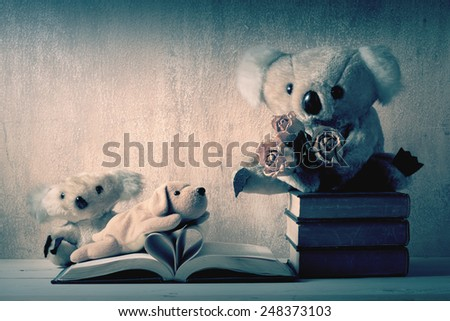 Fur bears and dog toy on books with love heart sign pages - stock photo