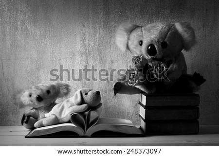 Fur bears and dog toy on books with love heart sign pages black and white version - stock photo