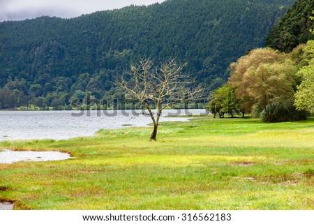 Furnas Lake in Sao Miguel, Azores Islands - stock photo
