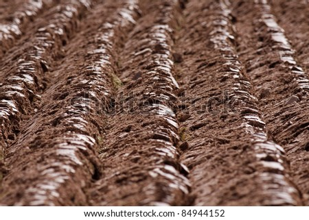 Furrows on a ploughed field - shallow depth of field. - stock photo