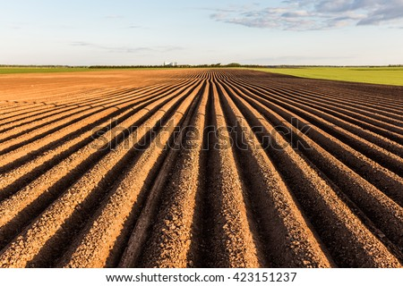 Furrows row pattern in a plowed field prepared for planting crops in spring. Horizontal view in perspective. - stock photo