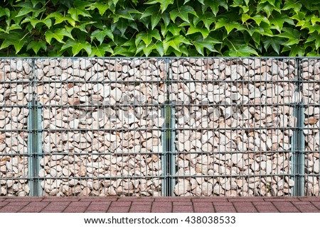 Gabion fence  wall  from  steel mesh with stones on green Virginia creeper vine Parthenocissus leaves plant garden background - stock photo