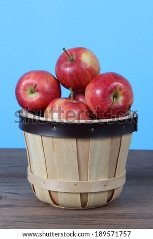 gala apple in bucket - stock photo