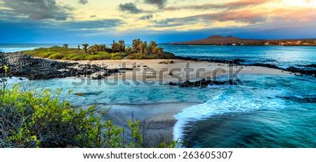 Galapagos - stock photo