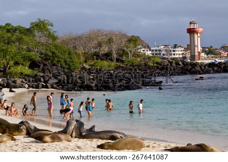 GALAPAGOS, ECUADOR -  JULY 17, 2010: Beautiful sea lions sunbathing unscared on the beach close to unidentified tourists in San Cristobal, Galapagos Islands - stock photo