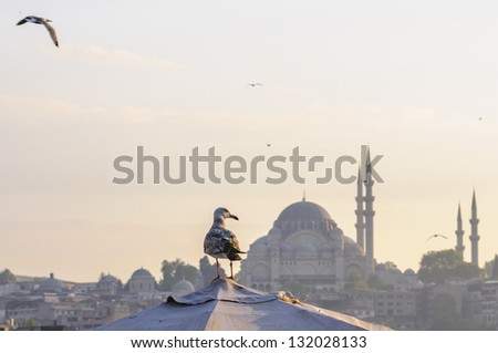 Galata waterfront with view of Suleymaniye mosque, Istanbul, Turkey - stock photo