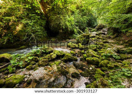 Galbena river flowing through a canyon in Apuseni mountains, Romania - stock photo
