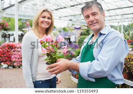 Garden center worker holding plant standing with blonde smiling woman - stock photo