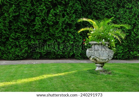 Garden decoration, palm plant pot - stock photo