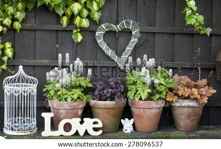 garden details - stock photo