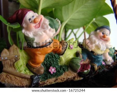 Garden dwarf close up - stock photo