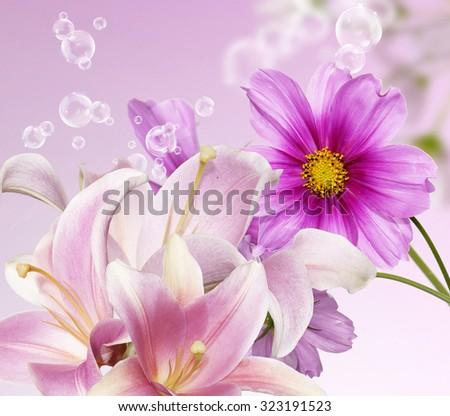 Garden flowers. - stock photo