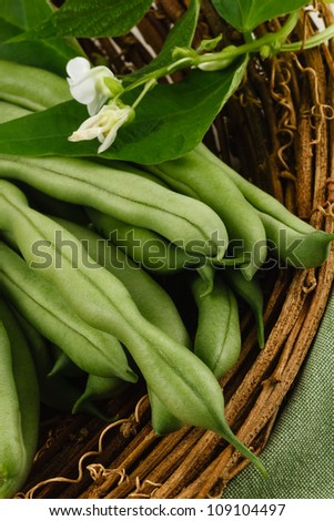 Garden fresh green beans, also known as string beans or runner beans, are a healthy vegetable and part of a nutritious diet. - stock photo