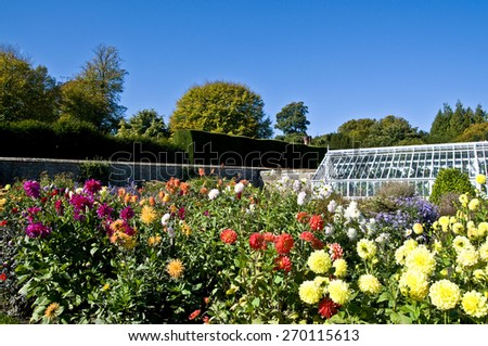 Garden Greenhouse - stock photo