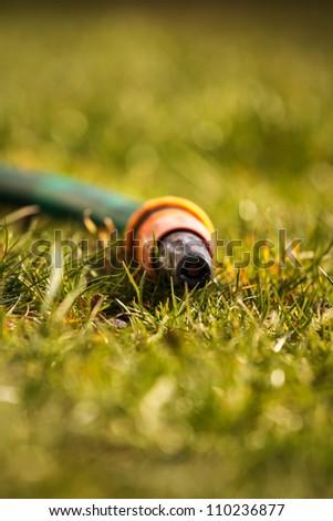 Garden hose on the grass - stock photo