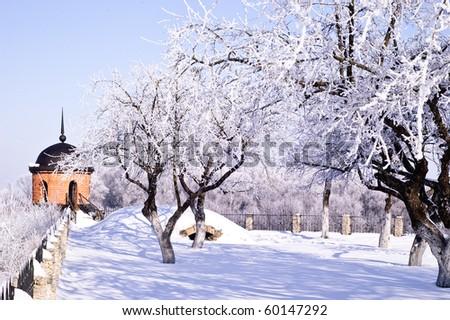 Garden in a winter dream - stock photo