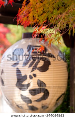 Garden in autumn,Japan - stock photo