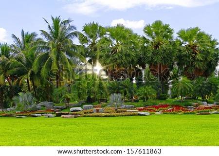 garden in summer  - stock photo