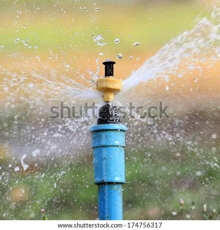 Garden irrigation system  or watering sprinkler - stock photo