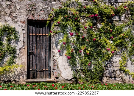 Garden landscape in Lake Como area, Northern Italy. Landscaping, vacation, relax, spa, architecture, travel, tourism, living and lifestyle concept - stock photo