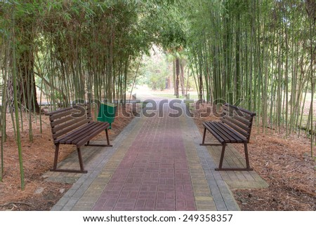 garden path in the shade of bamboo - stock photo